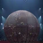 cirque gruss visuel 2.jpg