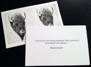 """""""Les bisons sont venus traverser Paris comme ils traversaient nos plaines"""""""