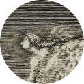 Jean-Dominique Cassini carte de la Lune