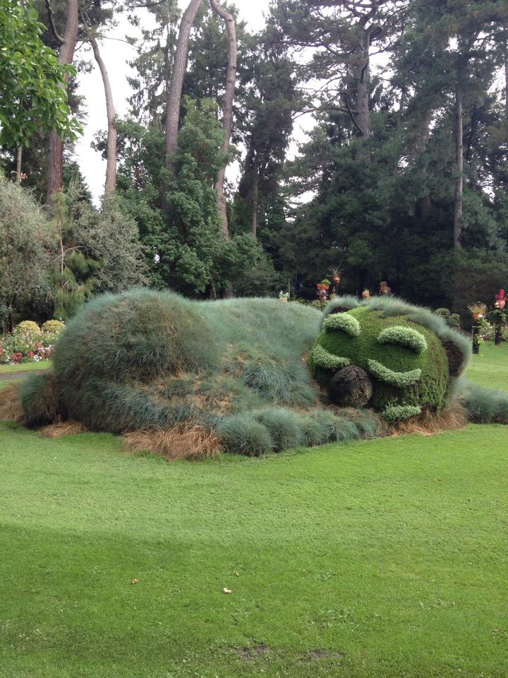 Gallery of Jardin Des Plantes Nantes Et Ponti