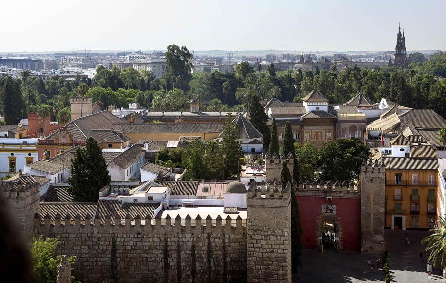 Vue d'ensemble des palais - photo du site