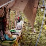 Habiter le campement - Groupe d'activistes écologiques, tree-sitting
