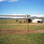 Habiter le campement - Yourte dans la vallée de l'Orkhon - Jeanne Menjoulet