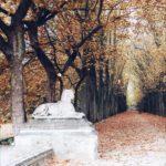 L'automne au château de Chenonceau