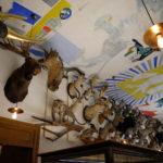 Salle des trophées au Musée de la chasse et de la nature