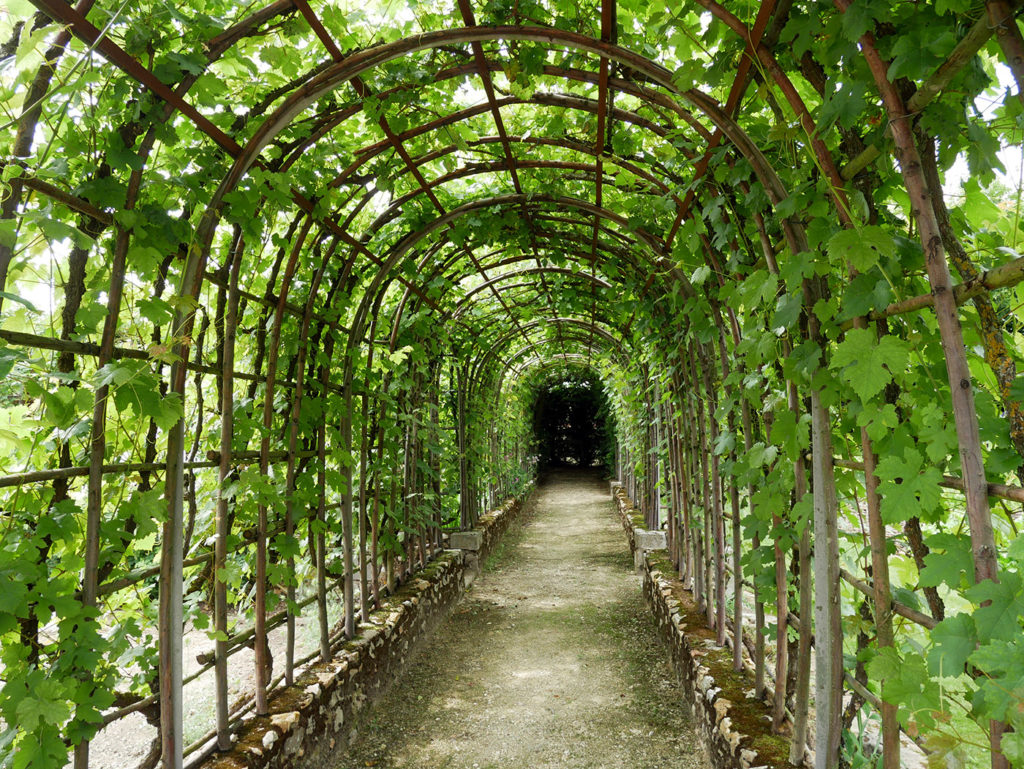 Le jardin de Bois Richeux