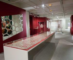 Le musée de la dentelle d'Alençon