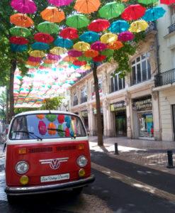 Visite en combi Volkswagen © Loire Vintage Discovery