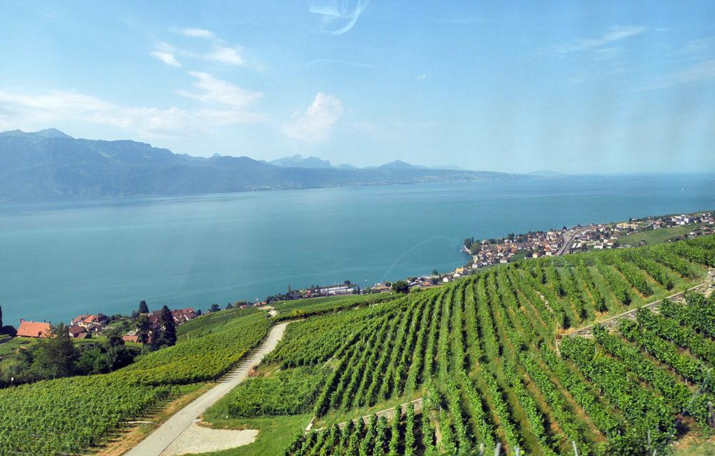 Le Lavaux, près de Lausanne