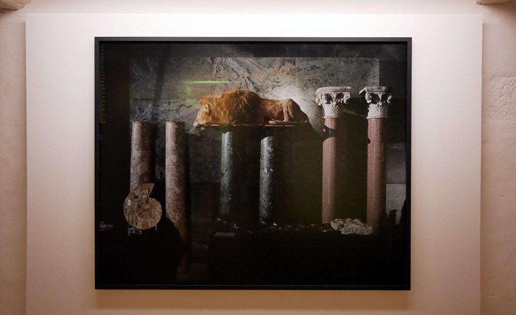 Yann Mignard, exposition Tant de choses planent dans l'air, d'où notre vertige, musée de l'Elysée