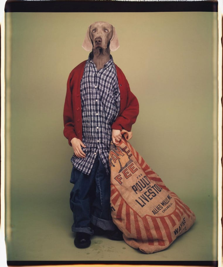 William Wegman, Farm Boy